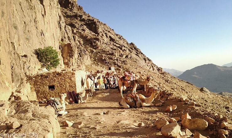 Паломничество на гору Синай