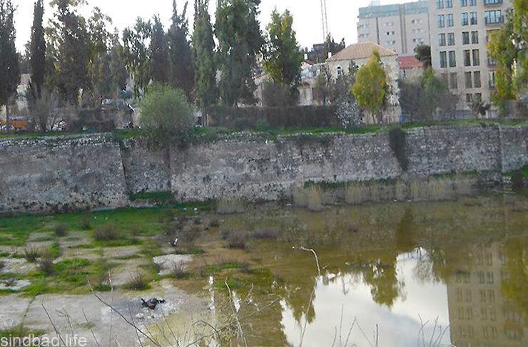 Бассейн Мамила фото