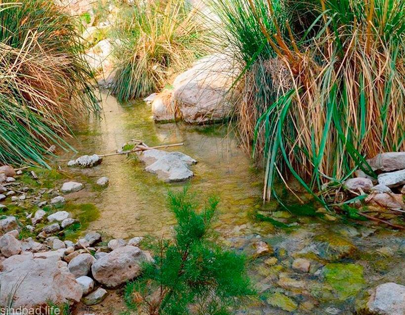 каньон Нахаль-Давид фото