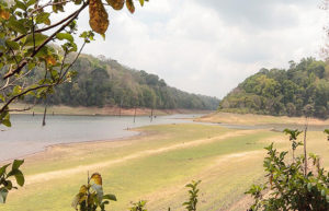 Национальный парк Перияр