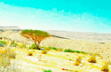Достопримечательности пустыни Негев