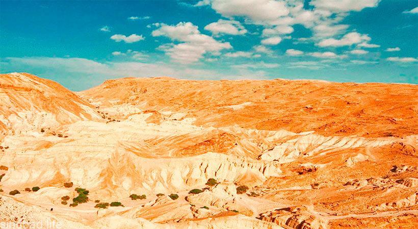 Пустыня Негев фото