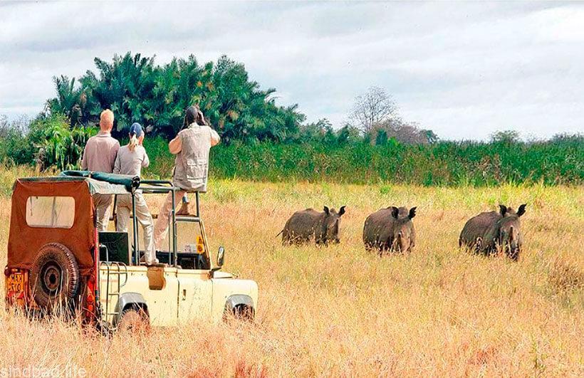охота в Малинди