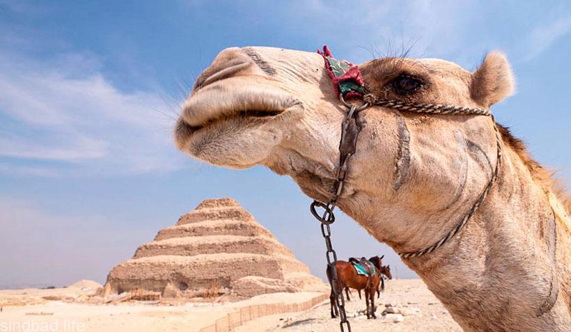 Ступенчатая пирамида Джосера фото